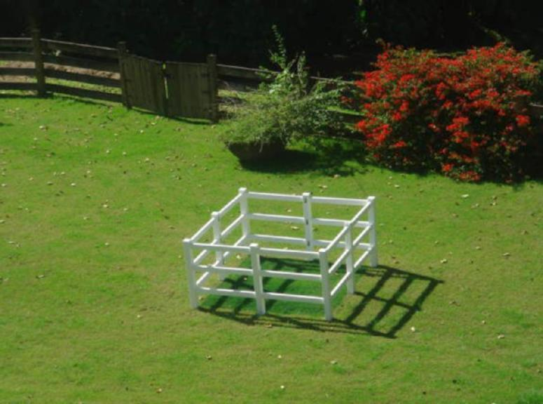 grasswasgreener8x8_copy.jpg
